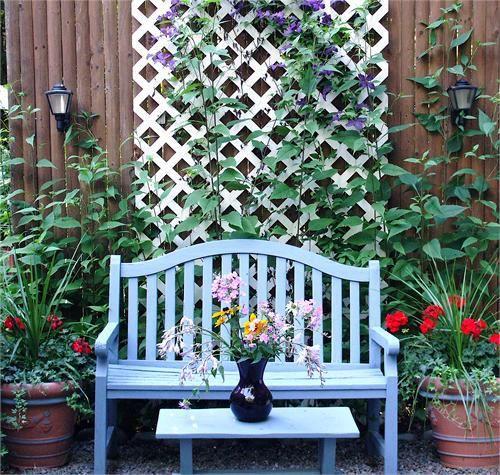 jardim com banco