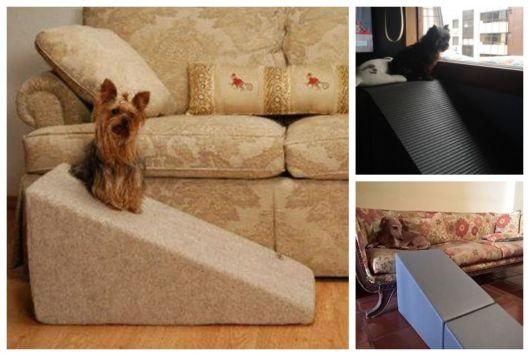 Montagem com exemplos de rampas para cachorros.
