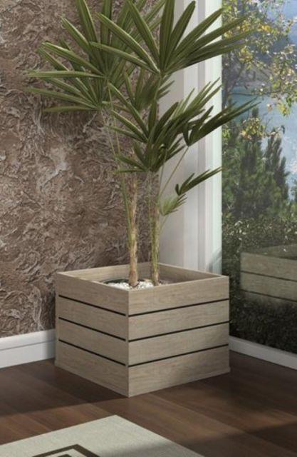 Os cachepots grandes são ideais para cultivar pequenas palmeiras