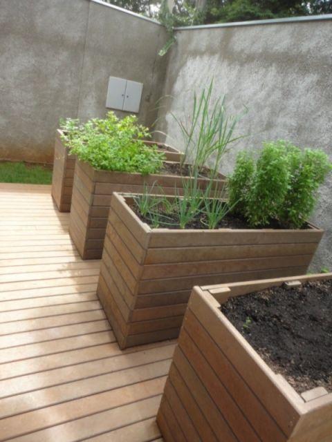 Alguns modelos servem até para cultivar ervas