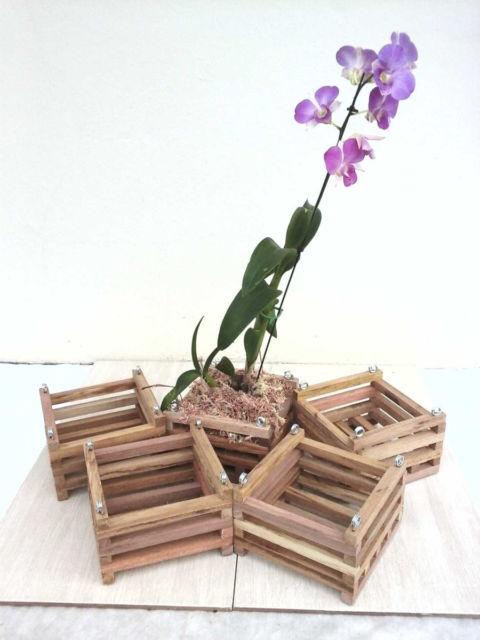 Pequenos cachepots quadrados para plantar várias orquídeas