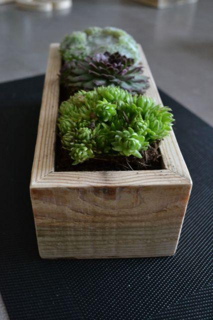 As madeiras rústicas também agradam e se destacam
