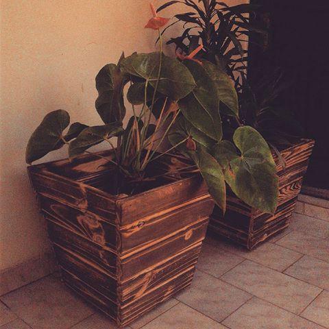 O cachepot de madeira é a melhor opção para substituir um vaso