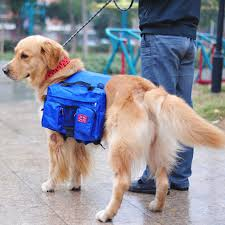 mochila para cachorro azul com dois bolsos