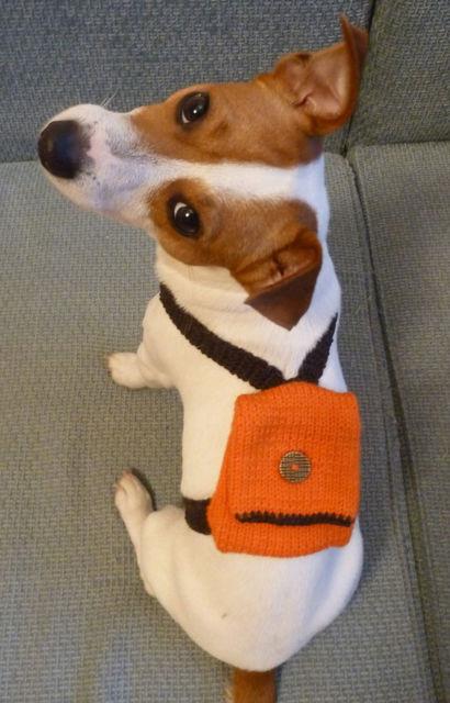 mochila para cachorro de crochê