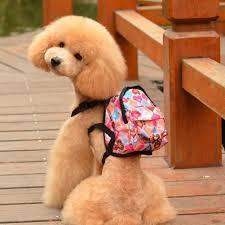 mochila para cachorro de lona colorida