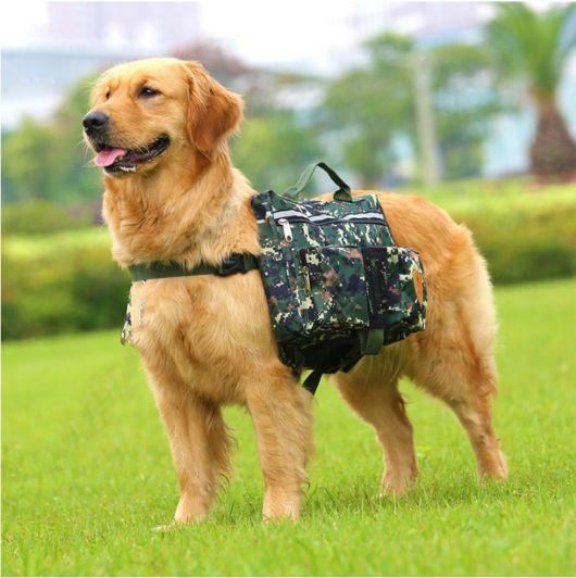 fotos de mochila para cachorro