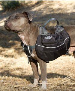 mochila para cachorro preta de nylon