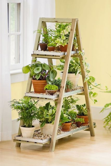 Dar um toque mais verde a sua casa ajuda a deixar o ambiente lindo e impecável