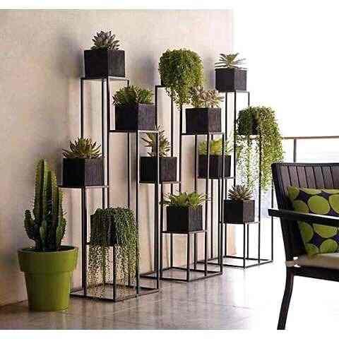 Suporte de ferro sofisticado com vários modelos de plantas