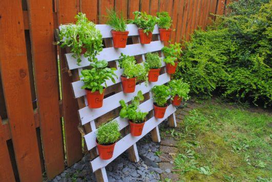 Que tal essa ideia para deixar seu quintal com várias ervas?
