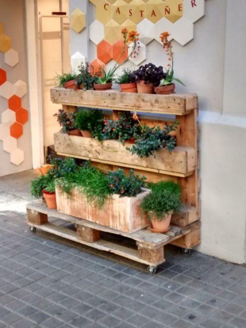 Suporte para plantas de pallet para deixar no chão, ótimo para cultivar ervas