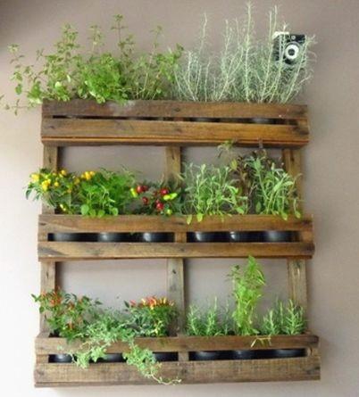 Suporte para plantas e ervas que todo mundo deve ter em casa