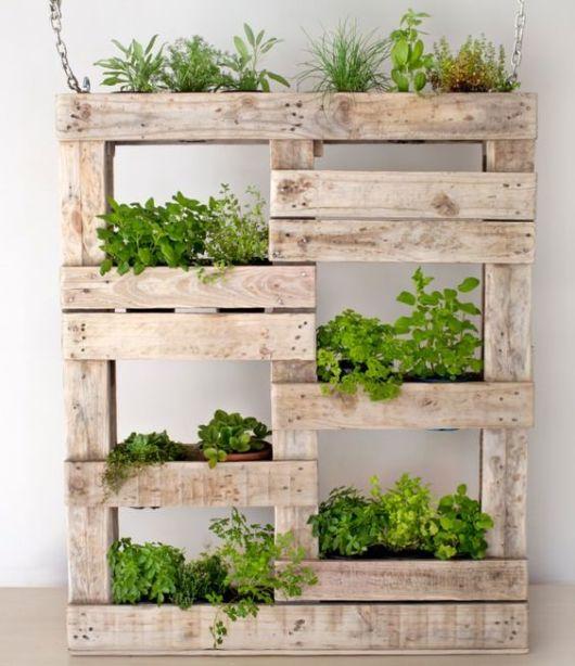 Pallet rústico com muitos vasos de plantas