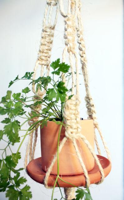 Use para cultivar diversas ervas que você usa no dia a dia