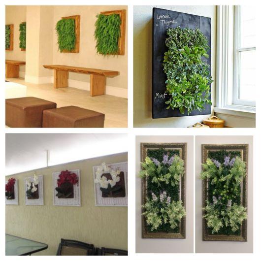 Lindas possibilidades para deixar sua casa mais verde e harmônica