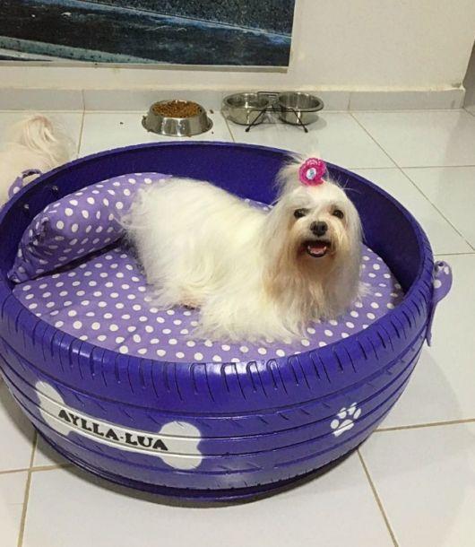 A caminha de cachorro improvisada com pneu é ótima para cães pequenos
