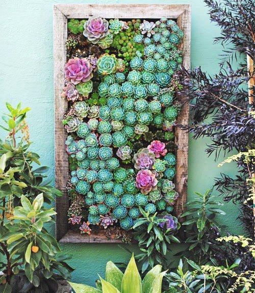 Seu jardim também fica mais lindo com as plantas emolduradas em uma estrutura de madeira
