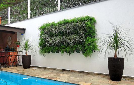 Um quadro enorme e com plantas de rápido crescimento na decoração externa