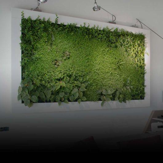 Por meio desse quadro, é possível cultivar plantas de diversos tipos