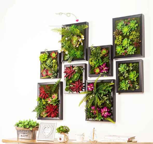 Diversos quadros pequenos com plantas e flores coloridas