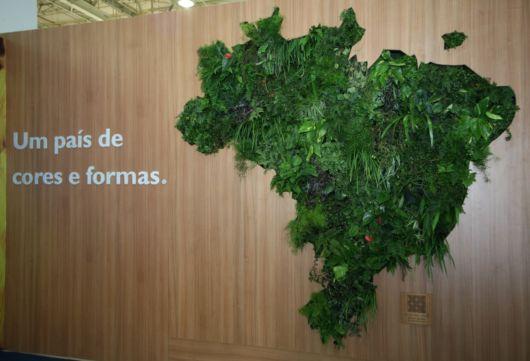 Quadro vivo temático no formato do mapa do Brasil, ideal para escritórios
