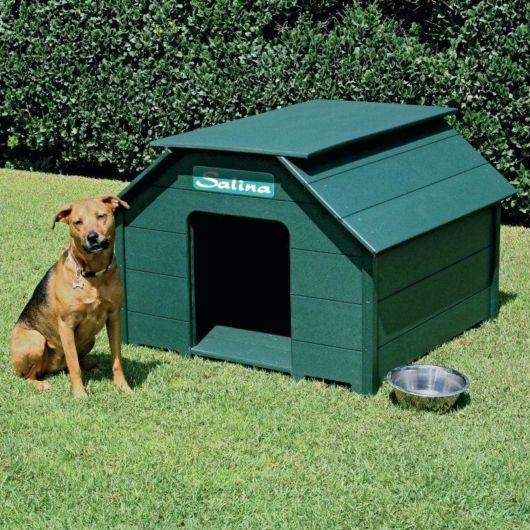 Casinha de cachorro de plástico.