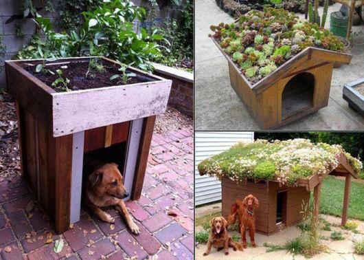 Essas casinhas de madeira servem até para destacar o seu jardim