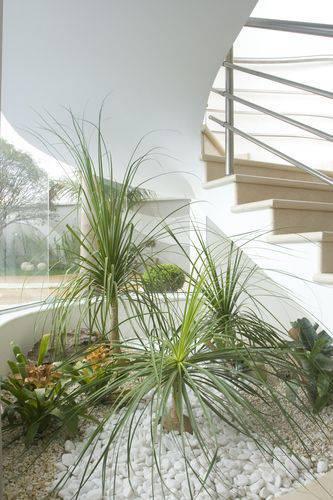 Lindo jardim de inverno para aproveitar um espaço vago na sala