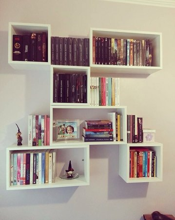 Com essa opção de nicho, você cria uma verdadeira biblioteca em sua casa