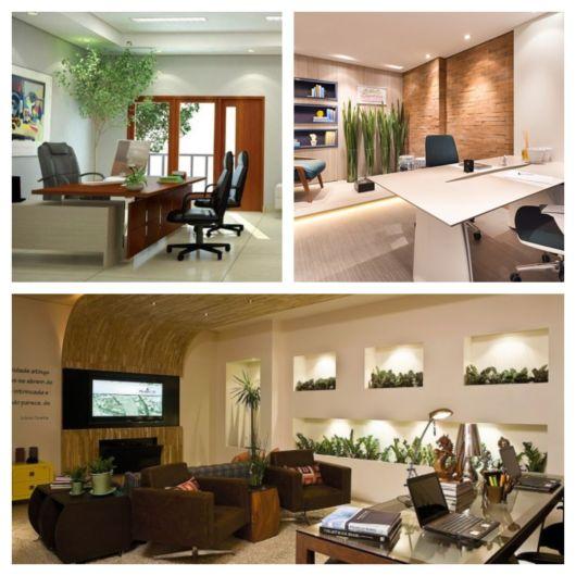 Lindos projetos + as melhores espécies de plantas para escritório