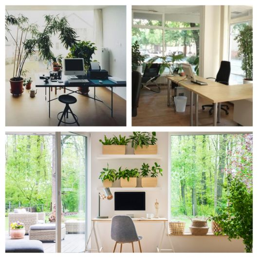 60 ideias de projetos para deixar seu office mais verde e com uma linda decoração!