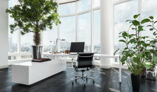 plantas escritório