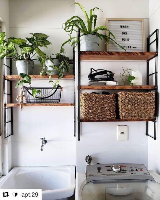 lavanderia com plantas