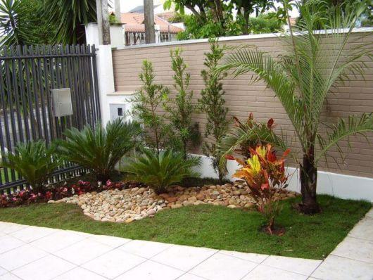 Plantas e flores para jardim