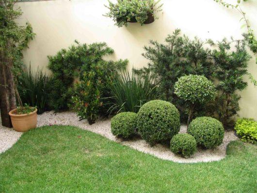 Jardim com plantas ornamentais