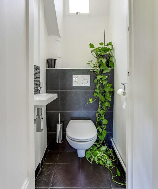 decoração com planta no banheiro