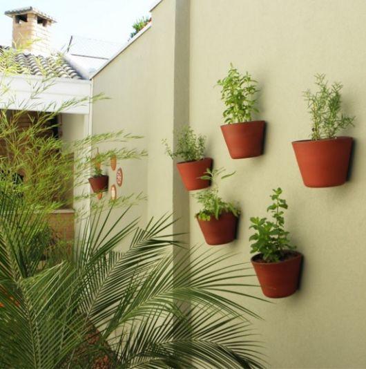 muro com horta vertical