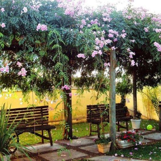 jardim com bancos de madeira