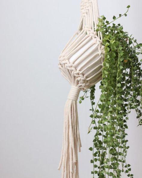 vaso com planta pendente