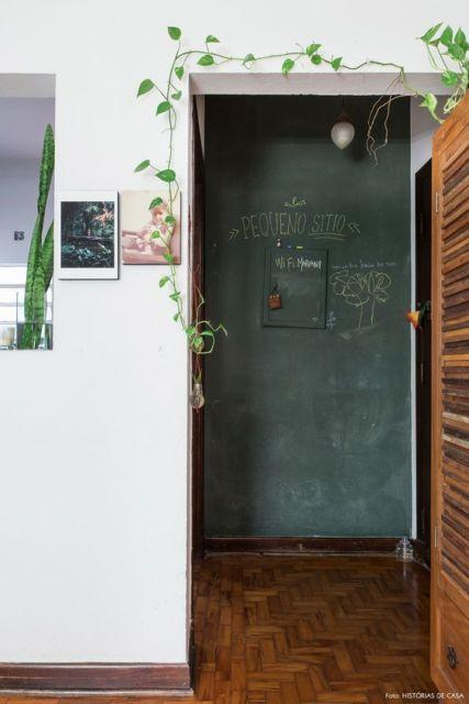 planta trepadeira dentro de casa