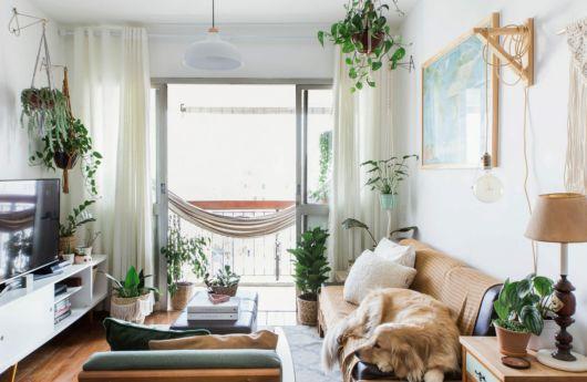 decoração sala pequena com plantas