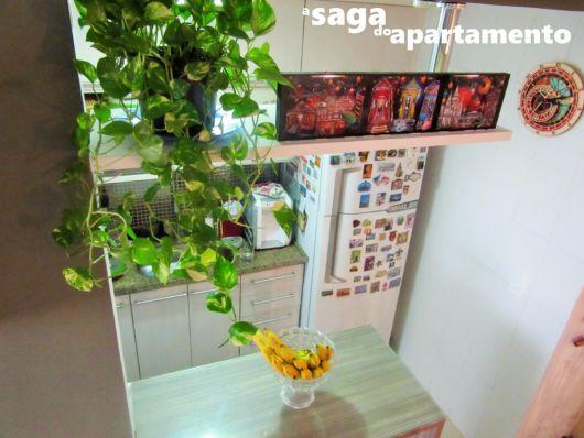 planta pendente cozinha