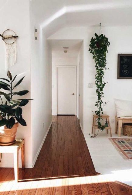 planta na sala