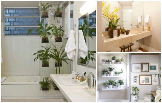 Plantas em banheiros