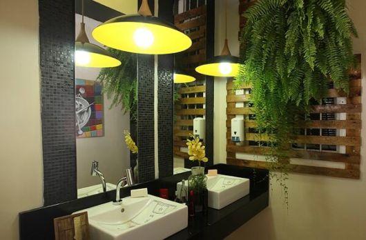 plantas para banheiro escuro