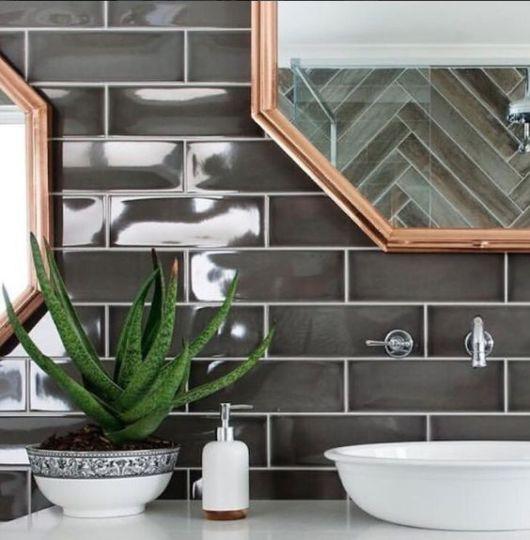 Aloe Vera na decoração do banheiro