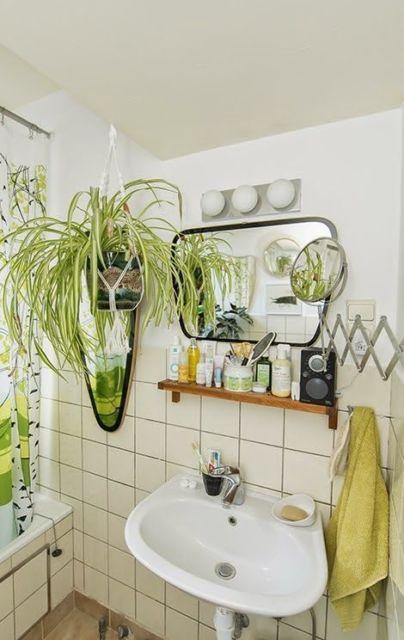 Clorofito na decoração do banheiro