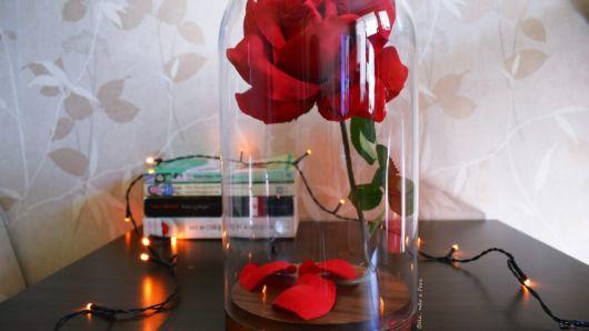 rosa vermelha decoração