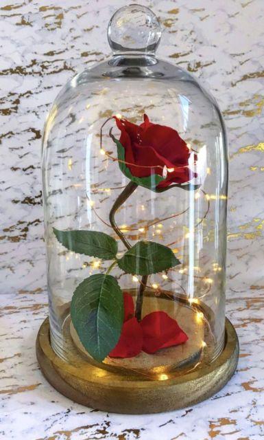 rosa com cordão de luzinha